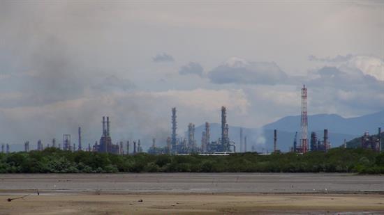 América Latina presenta rezago en transparencia de información ambiental